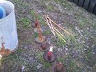 Lot# 478 - LOT OF SNOW PLOW SHOES & GUID