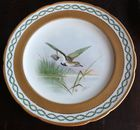 Close-up of Minton bird plate