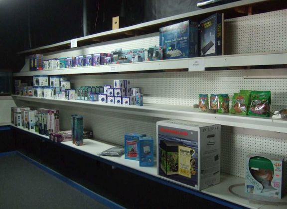 fort collins tropical fish pet store whitley auctions