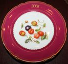 Fine porcelain plate sets