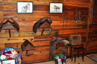 English and western saddles