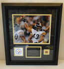 Troy Polamalu Plaque, Piece Played Ball